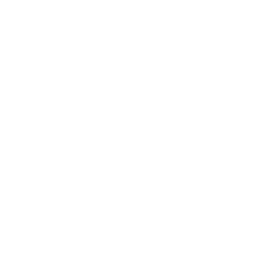Wordpress Modülleri